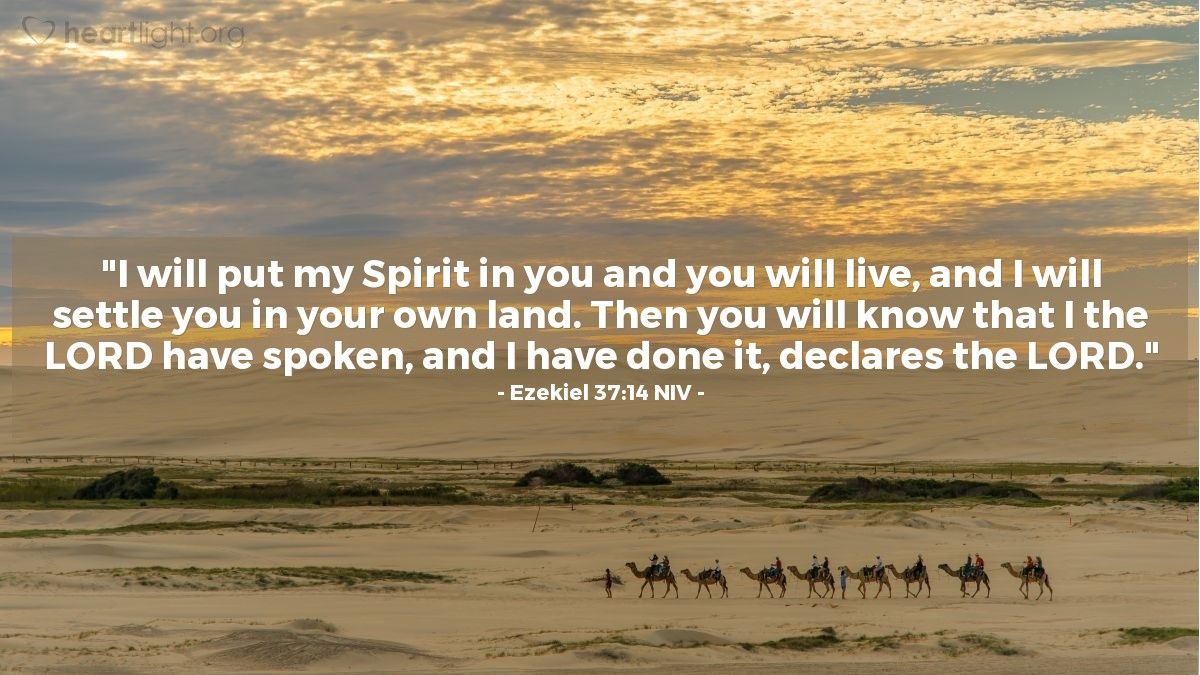 "Illustration of Ezekiel 37:14 NIV — ""I will put my Spirit in you and you will live, and I will settle you in your own land. Then you will know that I the LORD have spoken, and I have done it, declares the LORD."""