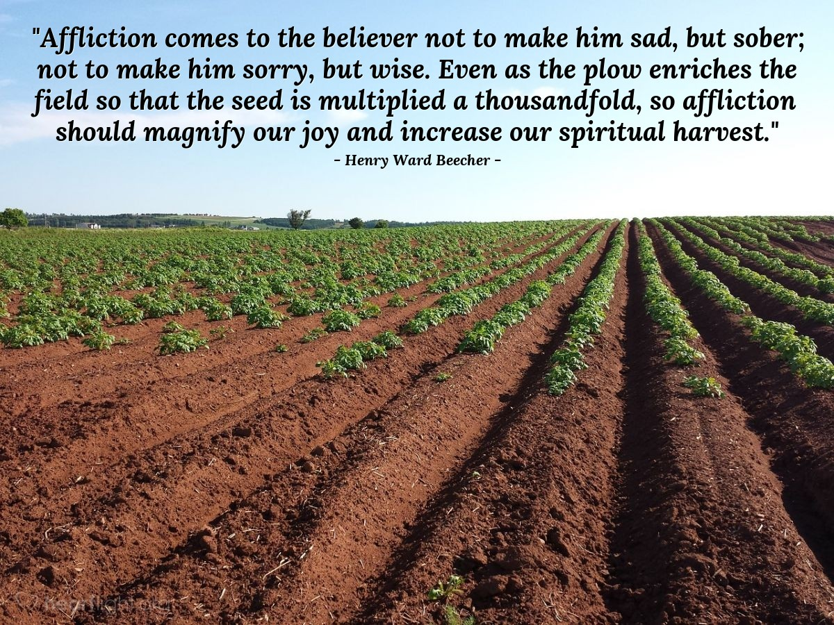 "Illustration of Henry Ward Beecher — ""Affliction comes to the believer not to make him sad, but sober; not to make him sorry, but wise. Even as the plow enriches the field so that the seed is multiplied a thousandfold, so affliction should magnify our joy and increase our spiritual harvest."""
