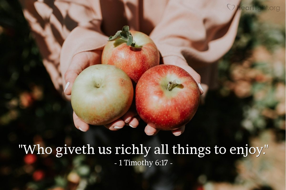 "Illustration of 1 Timothy 6:17 — ""Who giveth us richly all things to enjoy."""