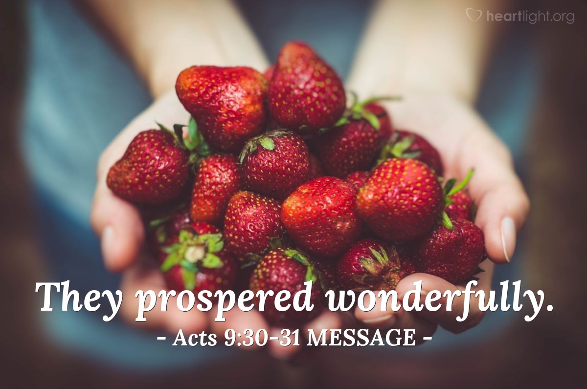 Illustration of Acts 9:30-31 MESSAGE —  They prospered wonderfully.