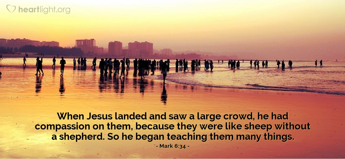 Illustration of Mark 6:34 — When Jesus landed and saw a large crowd, he had compassion on them, because they were like sheep without a shepherd. So he began teaching them many things.