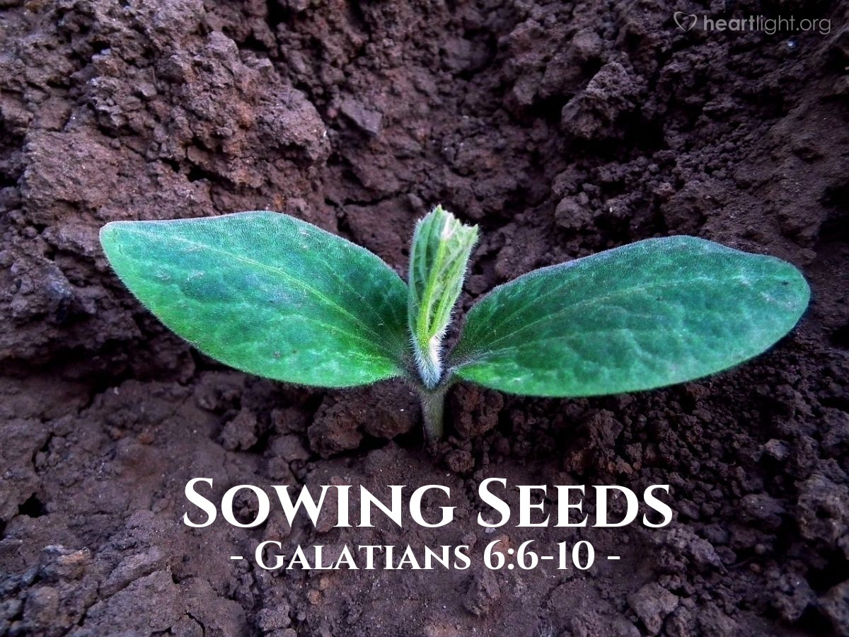 Sowing Seeds — Galatians 6:6-10
