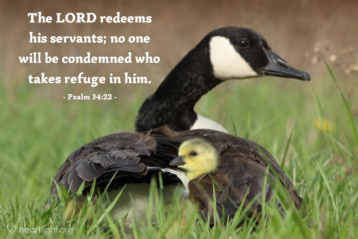 Illustration of Psalm 34:22 — The LORD redeems his servants; no one will be condemned who takes refuge in him.