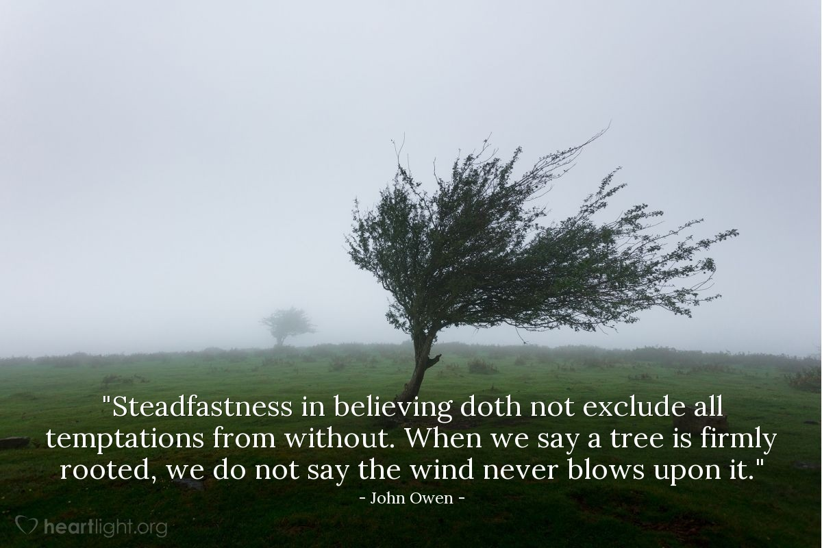 "Illustration of John Owen — ""Steadfastness in believing doth not exclude all temptations from without. When we say a tree is firmly rooted, we do not say the wind never blows upon it."""