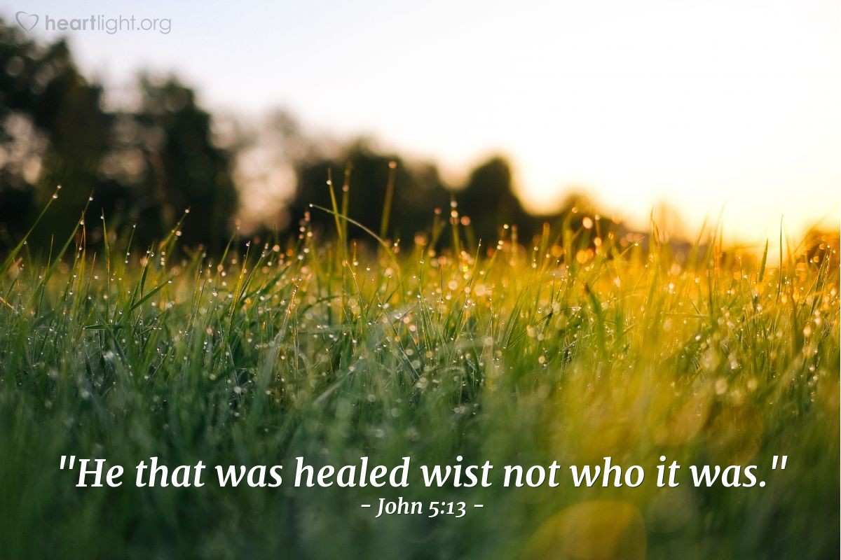 "Illustration of John 5:13 — ""He that was healed wist not who it was."""