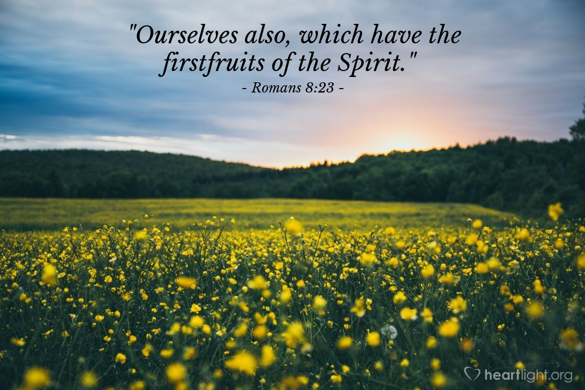 """Illustration of Romans 8:23 — """"Ourselves also, which have the firstfruits of the Spirit."""""""