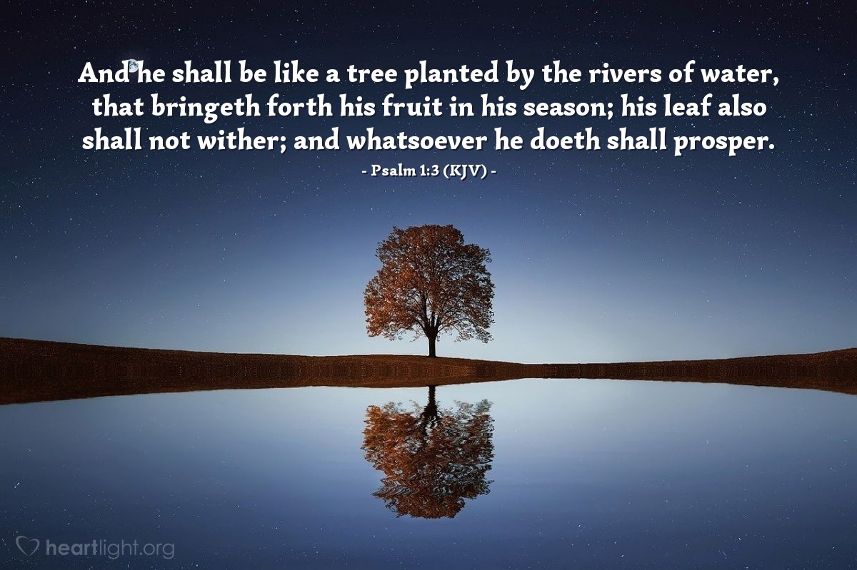 Illustration of Psalm 1:3 (KJV) — And he shall be like a tree planted by the rivers of water, that bringeth forth his fruit in his season; his leaf also shall not wither; and whatsoever he doeth shall prosper.