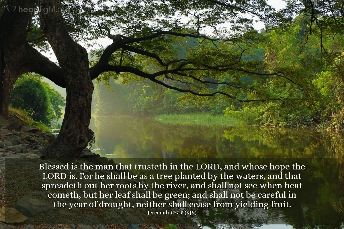 Illustration of Jeremiah 17:7-8 (KJV) — Blessed is the man that trusteth in the LORD, and whose hope the LORD is. For he shall be as a tree planted by the waters, and that spreadeth out her roots by the river, and shall not see when heat cometh, but her leaf shall be green; and shall not be careful in the year of drought, neither shall cease from yielding fruit.