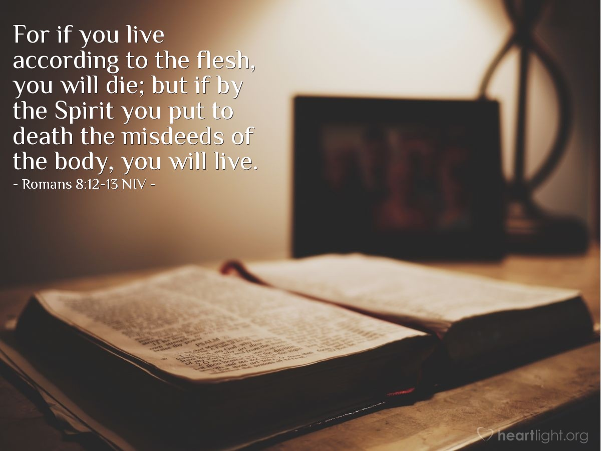 Illustration of Romans 8:12-13 NIV —  For if you live according to the flesh, you will die; but if by the Spirit you put to death the misdeeds of the body, you will live.