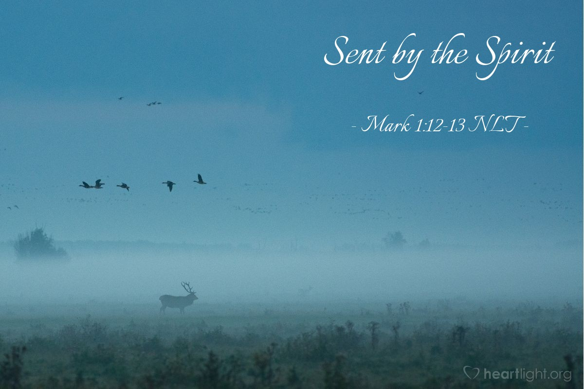 Illustration of Mark 1:12-13 NLT — The Spirit then compelled Jesus to go into the wilderness, where he was tempted by Satan for forty days. He was out among the wild animals, and angels took care of him.