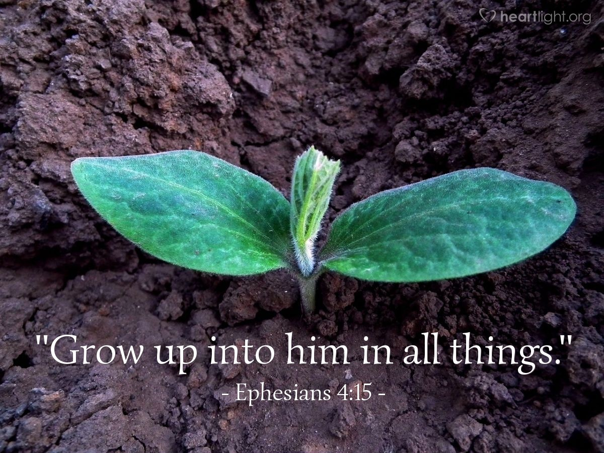 "Illustration of Ephesians 4:15 — ""Grow up into him in all things."""
