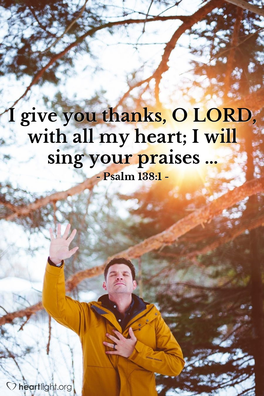 Illustration of Psalm 138:1 — I give you thanks, O LORD, with all my heart; I will sing your praises ...