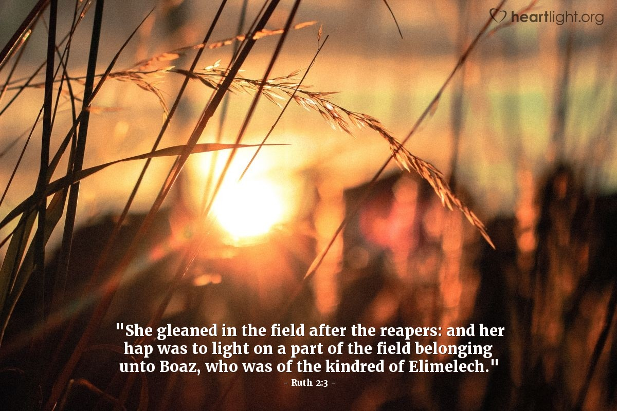 "Illustration of Ruth 2:3 — ""She gleaned in the field after the reapers: and her hap was to light on a part of the field belonging unto Boaz, who was of the kindred of Elimelech."""