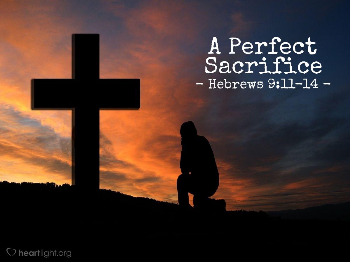 A Perfect Sacrifice — Hebrews 9:11-14