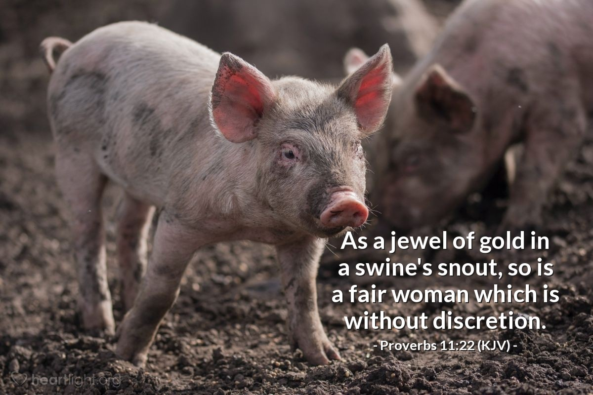 Illustration of Proverbs 11:22 (KJV) — As a jewel of gold in a swine's snout, so is a fair woman which is without discretion.