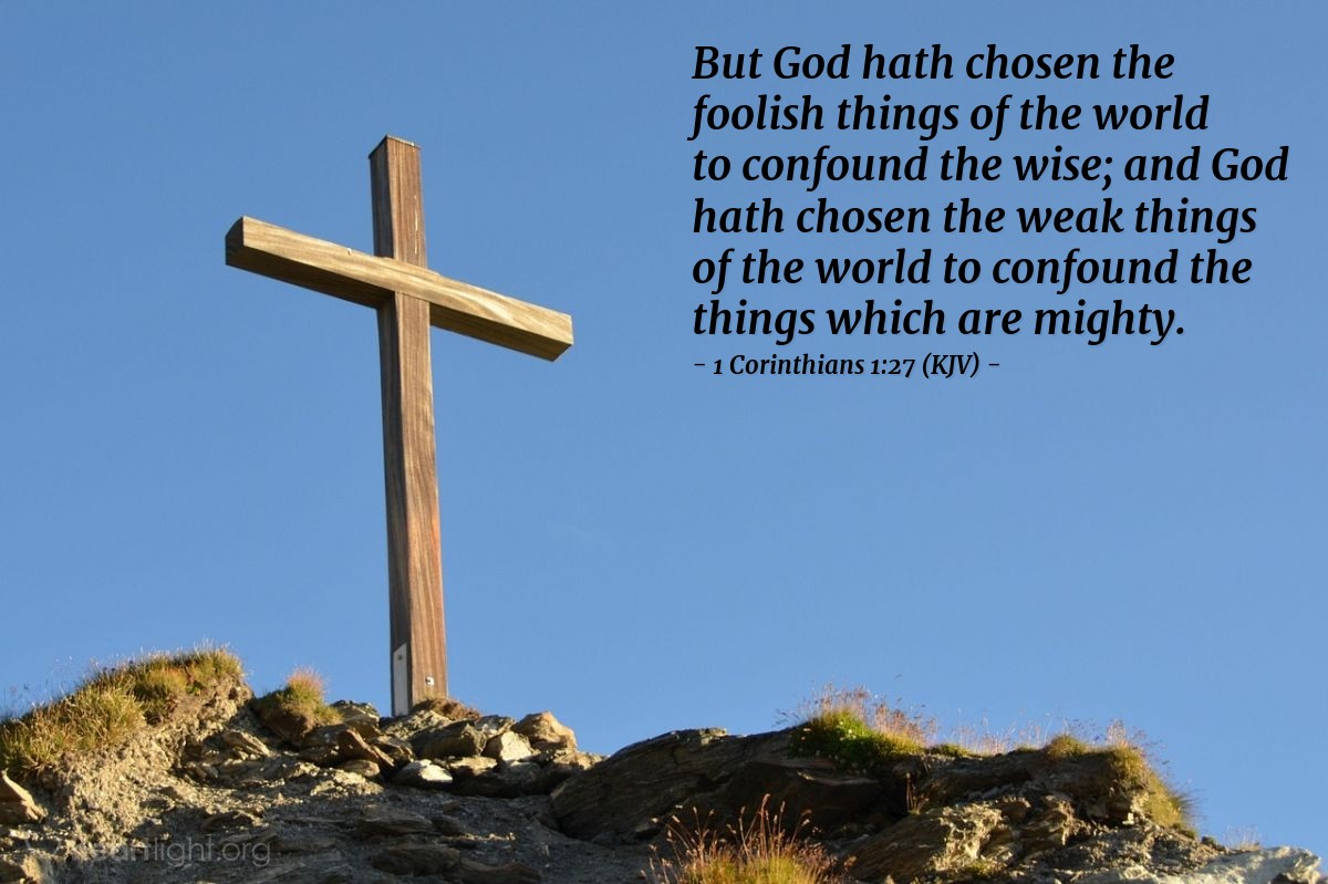 Illustration of 1 Corinthians 1:27 (KJV) — But God hath chosen the foolish things of the world to confound the wise; and God hath chosen the weak things of the world to confound the things which are mighty;