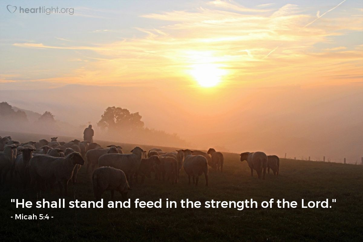 "Illustration of Micah 5:4 — ""He shall stand and feed in the strength of the Lord."""