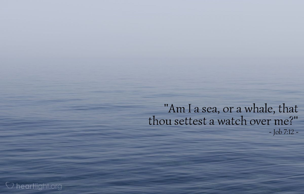 "Illustration of Job 7:12 — ""Am I a sea, or a whale, that thou settest a watch over me?"""
