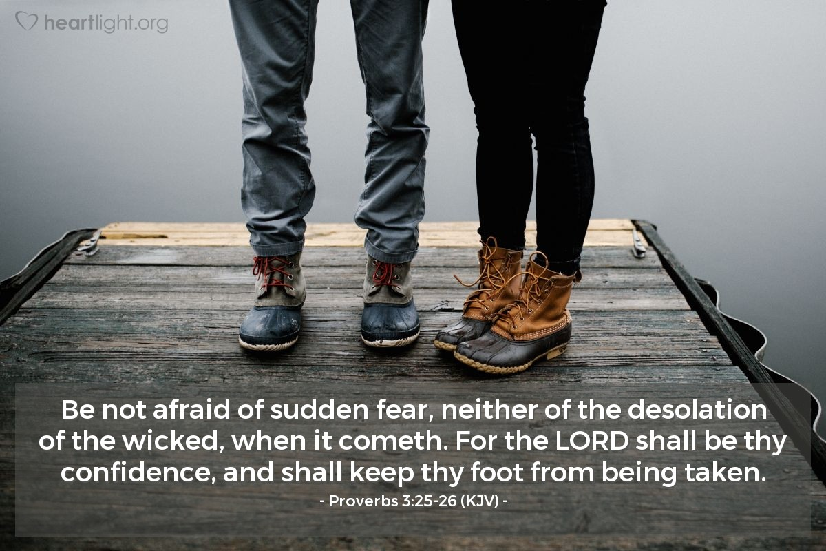 Illustration of Proverbs 3:25-26 (KJV) — Be not afraid of sudden fear, neither of the desolation of the wicked, when it cometh. For the LORD shall be thy confidence, and shall keep thy foot from being taken.