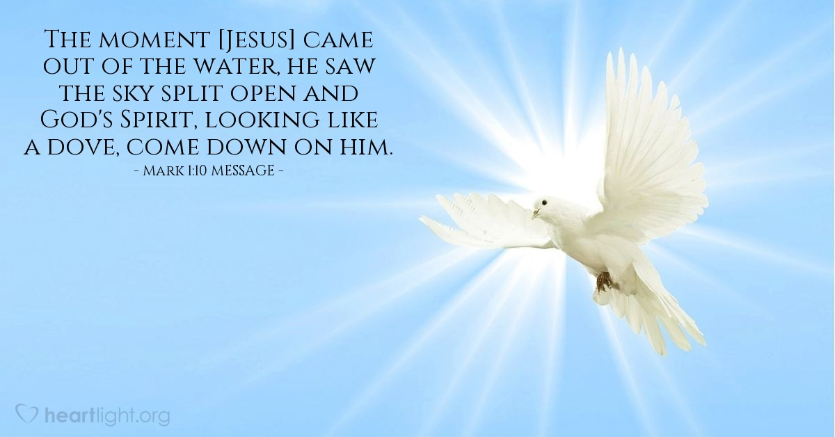 Illustration of Mark 1:10 MESSAGE — The moment [Jesus] came out of the water, he saw the sky split open and God's Spirit, looking like a dove, come down on him.