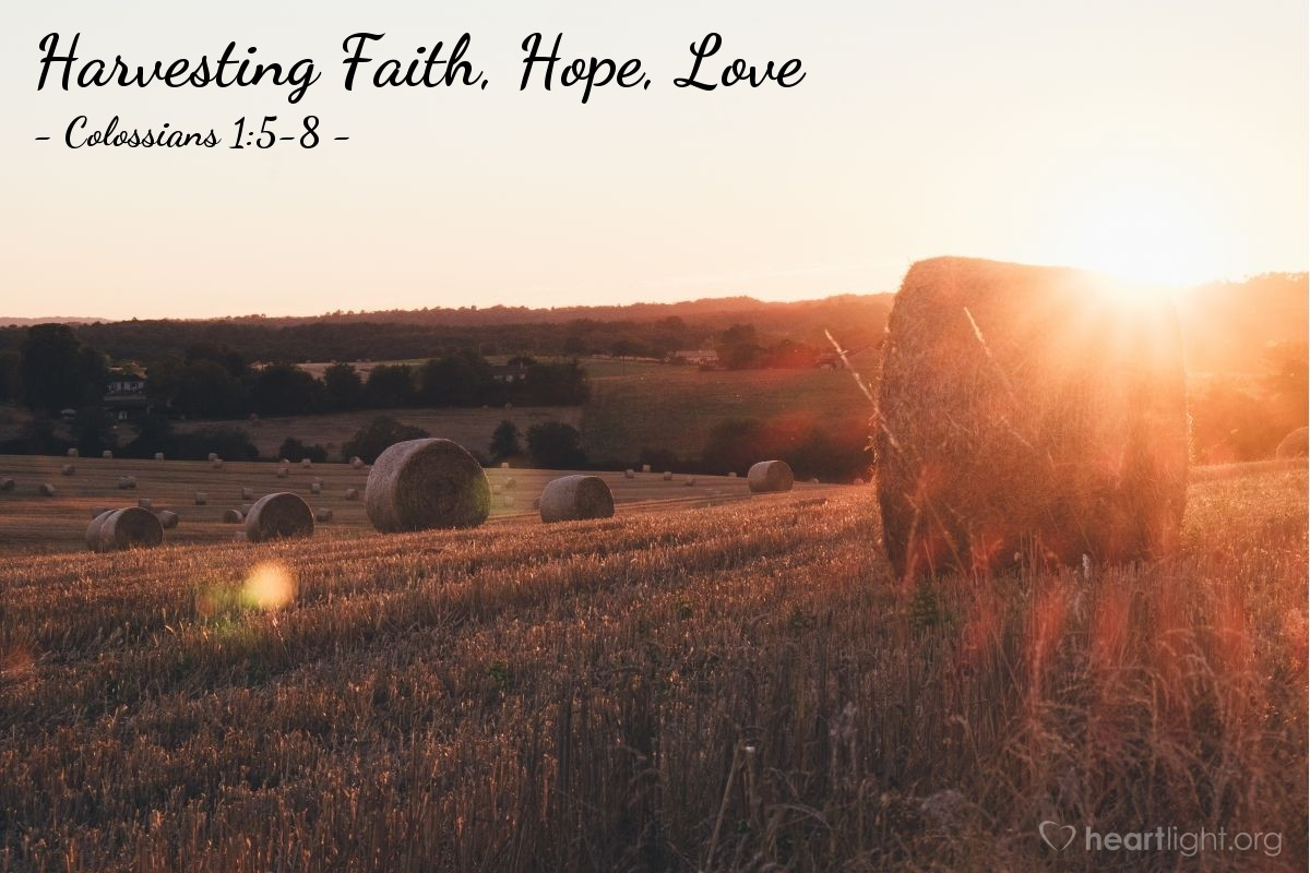Harvesting Faith, Hope, Love — Colossians 1:5-8