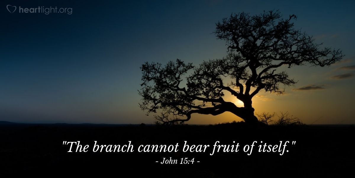 "Illustration of John 15:4 — ""The branch cannot bear fruit of itself."""