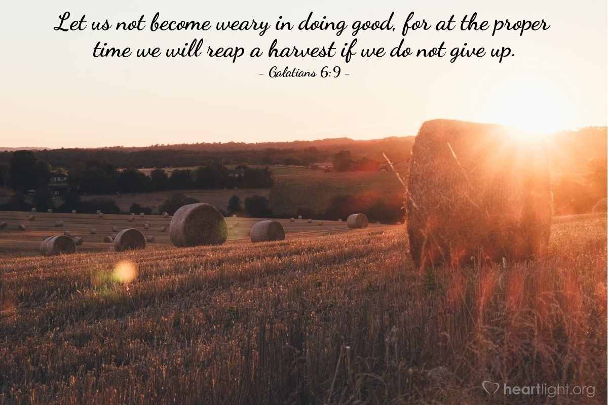 Illustration of Galatians 6:9 — Let us not become weary in doing good, for at the proper time we will reap a harvest if we do not give up.