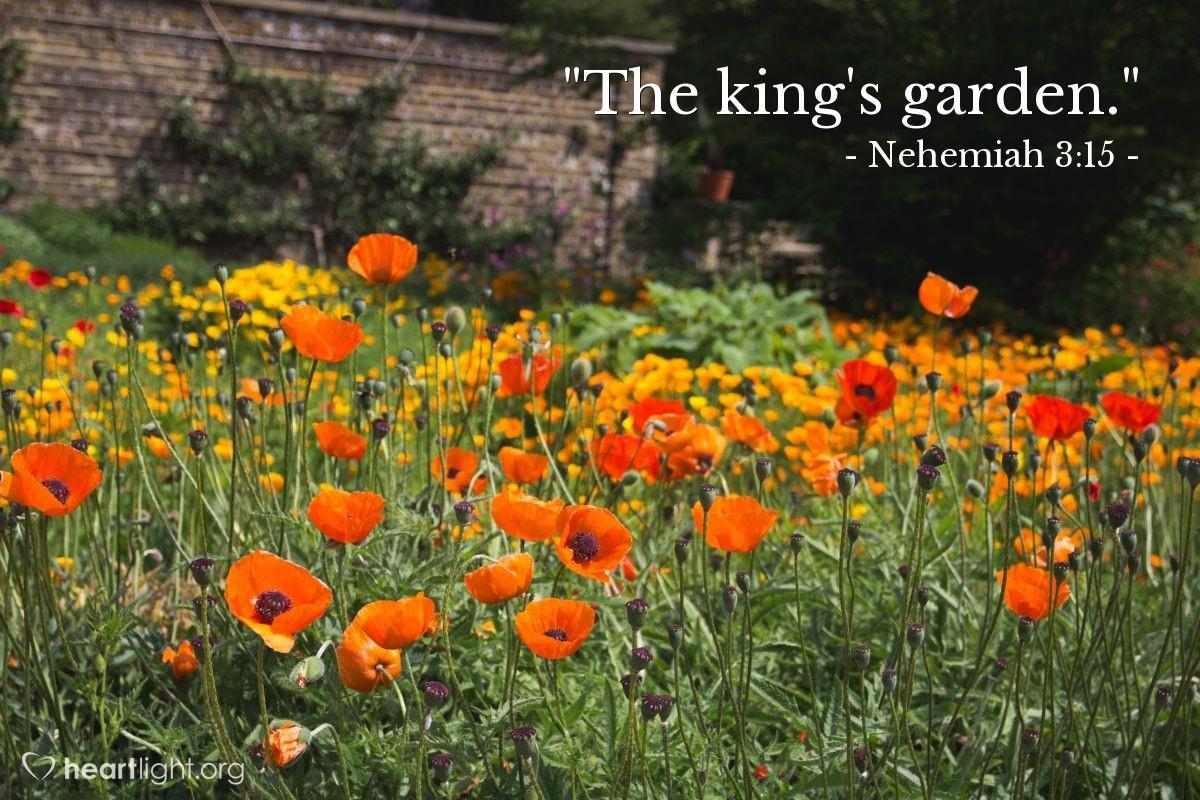 """Illustration of Nehemiah 3:15 — """"The king's garden."""""""