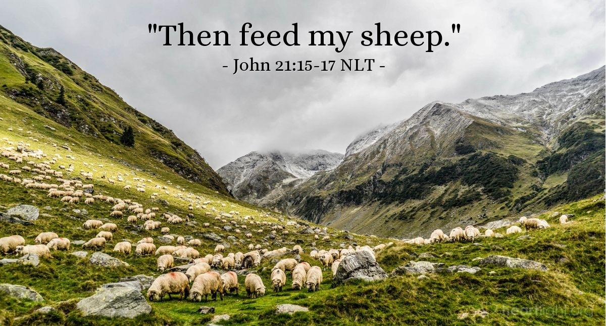 "Illustration of John 21:15-17 NLT — ""Then feed my sheep."""