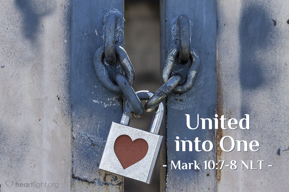 "Illustration of Mark 10:7-8 NLT — ""'This explains why a man leaves his father and mother and is joined to his wife, and the two are united into one.' Since they are no longer two but one, ..."""