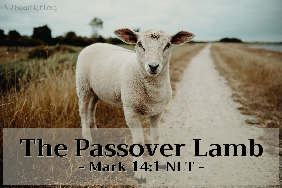 Illustration of Mark 14:1 NLT — It was now only two days before the Passover and the Festival of Unleavened Bread.