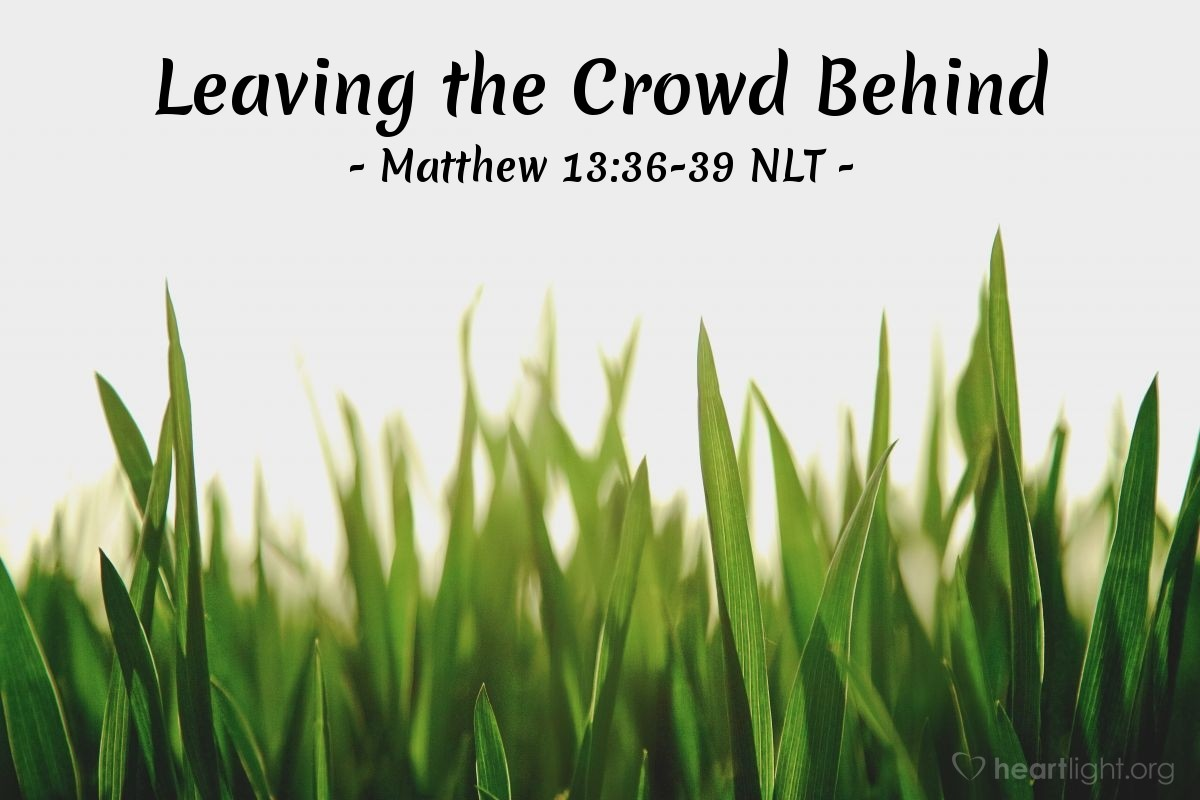 "Illustration of Matthew 13:36-39 NLT — ""Explain to us the meaning of the story about the weeds in the field."""