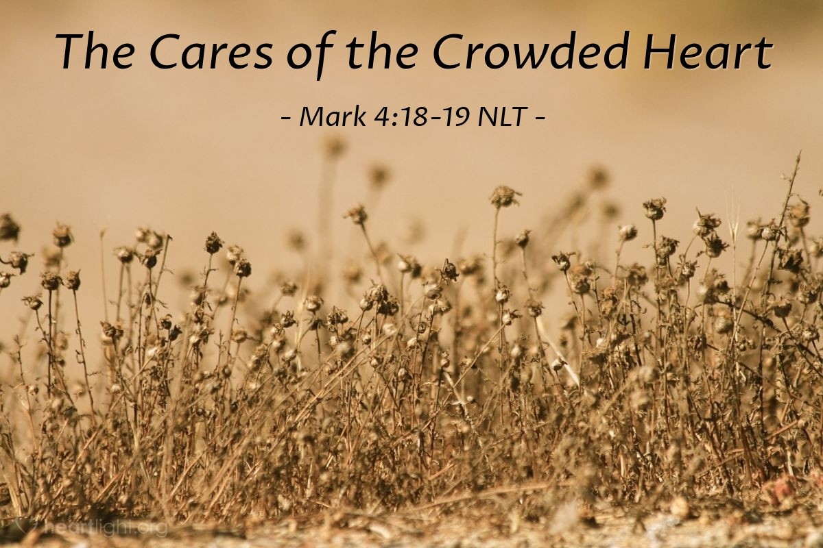 "Illustration of Mark 4:18-19 NLT — ""Other people are like the seed planted among the thorny weeds."""