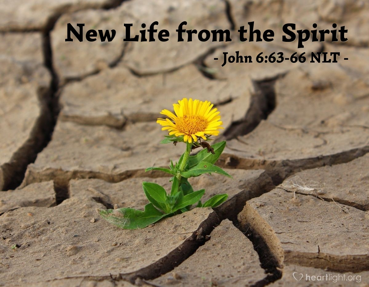 "Illustration of John 6:63-66 NLT — ""The Spirit alone gives eternal life. Human effort accomplishes nothing. And the very words I have spoken to you are spirit and life. But some of you do not believe me."""