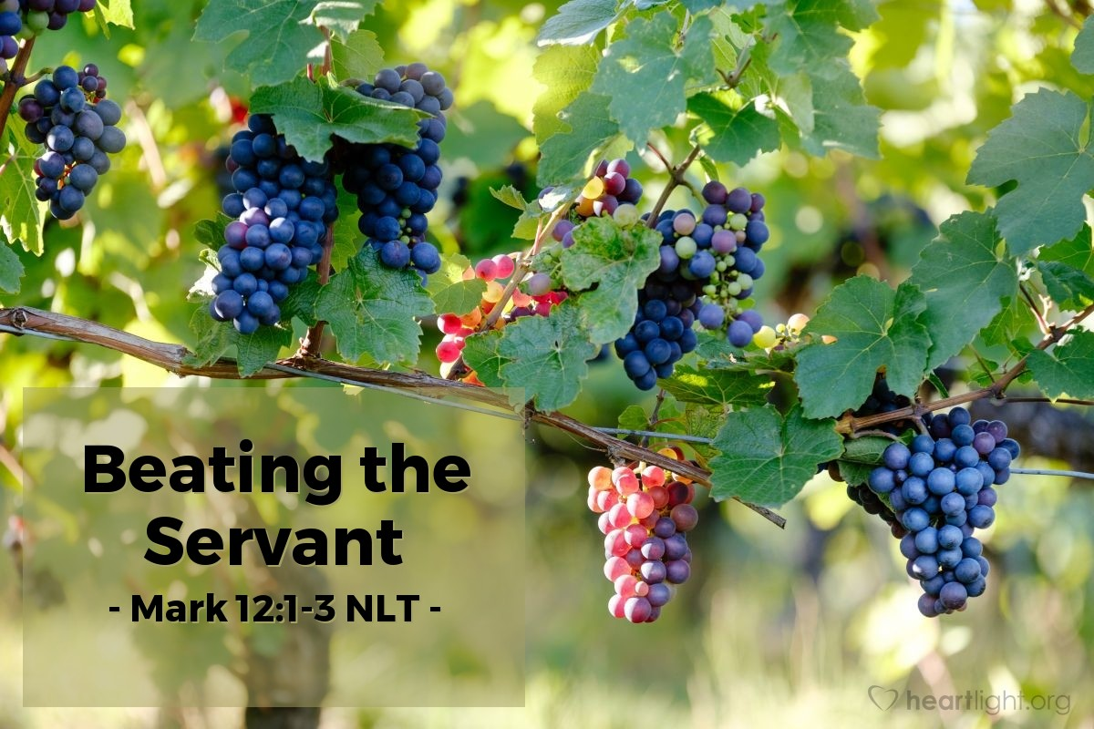 Illustration of Mark 12:1-3 NLT —  So the man sent a servant to the farmers to get his share of the grapes.