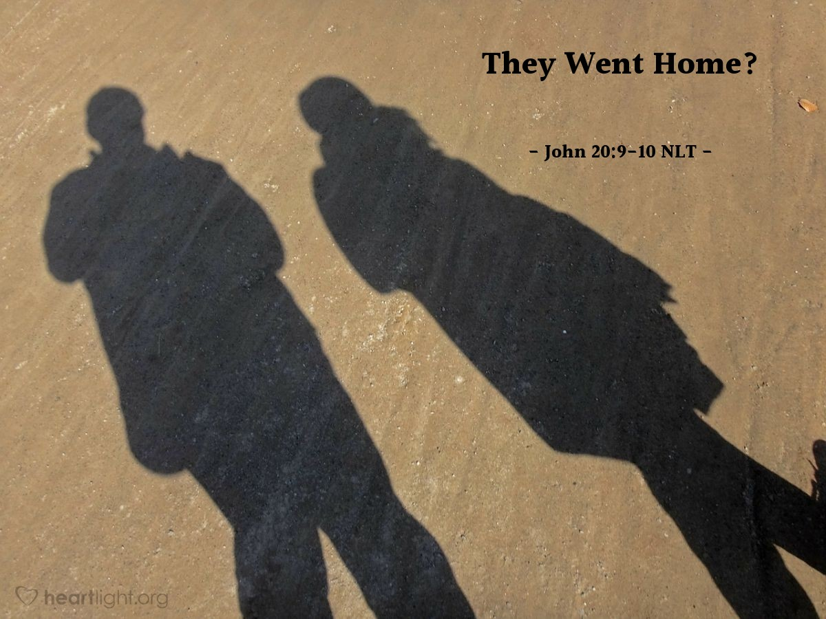 Illustration of John 20:9-10 NLT — [For until John and Peter saw the empty tomb,] they still hadn't understood the Scriptures that said Jesus must rise from the dead. Then they went home.