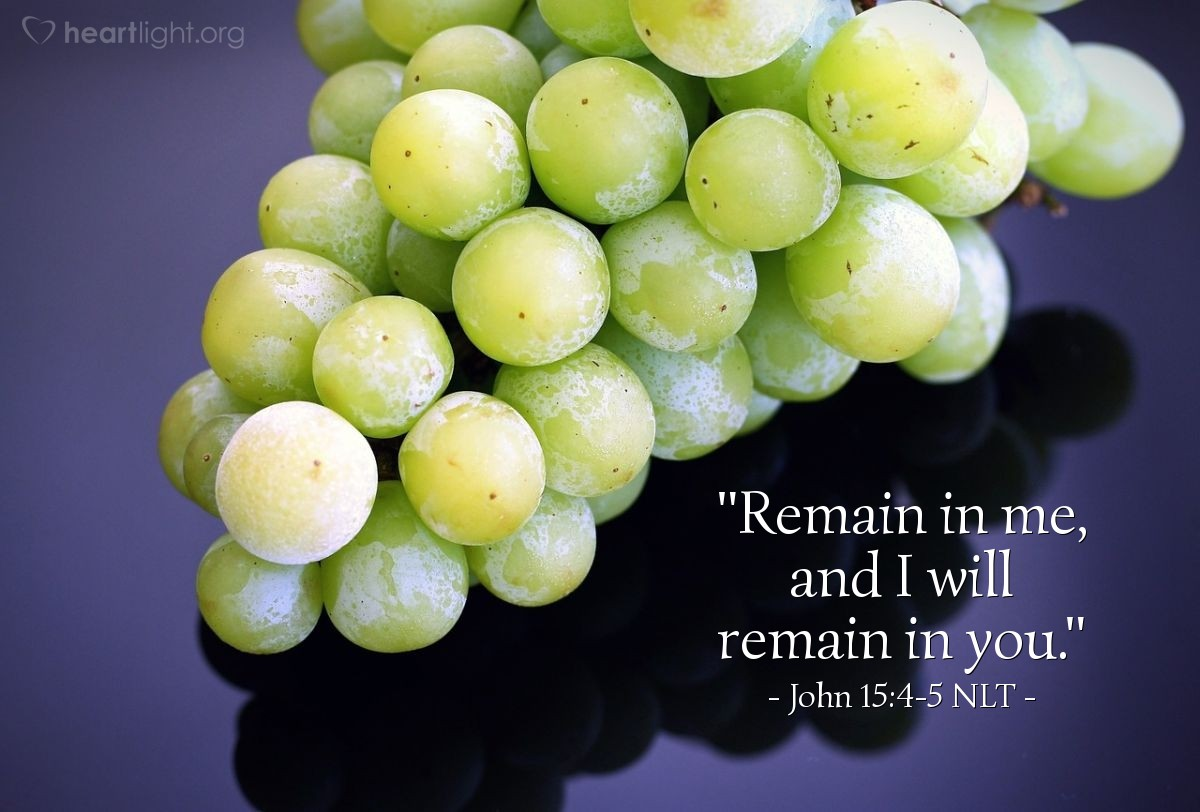 "Illustration of John 15:4-5 NLT — ""Continue in me and I will continue in you. No branch can make fruit alone. It must continue in the vine. It is the same with you. You cannot make fruit alone. You must continue in me. """