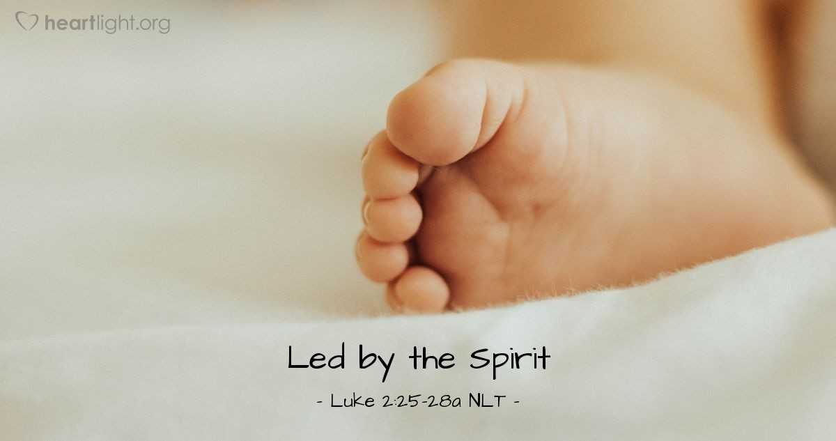 Illustration of Luke 2:25-27 NLT —  The Holy Spirit was in him.