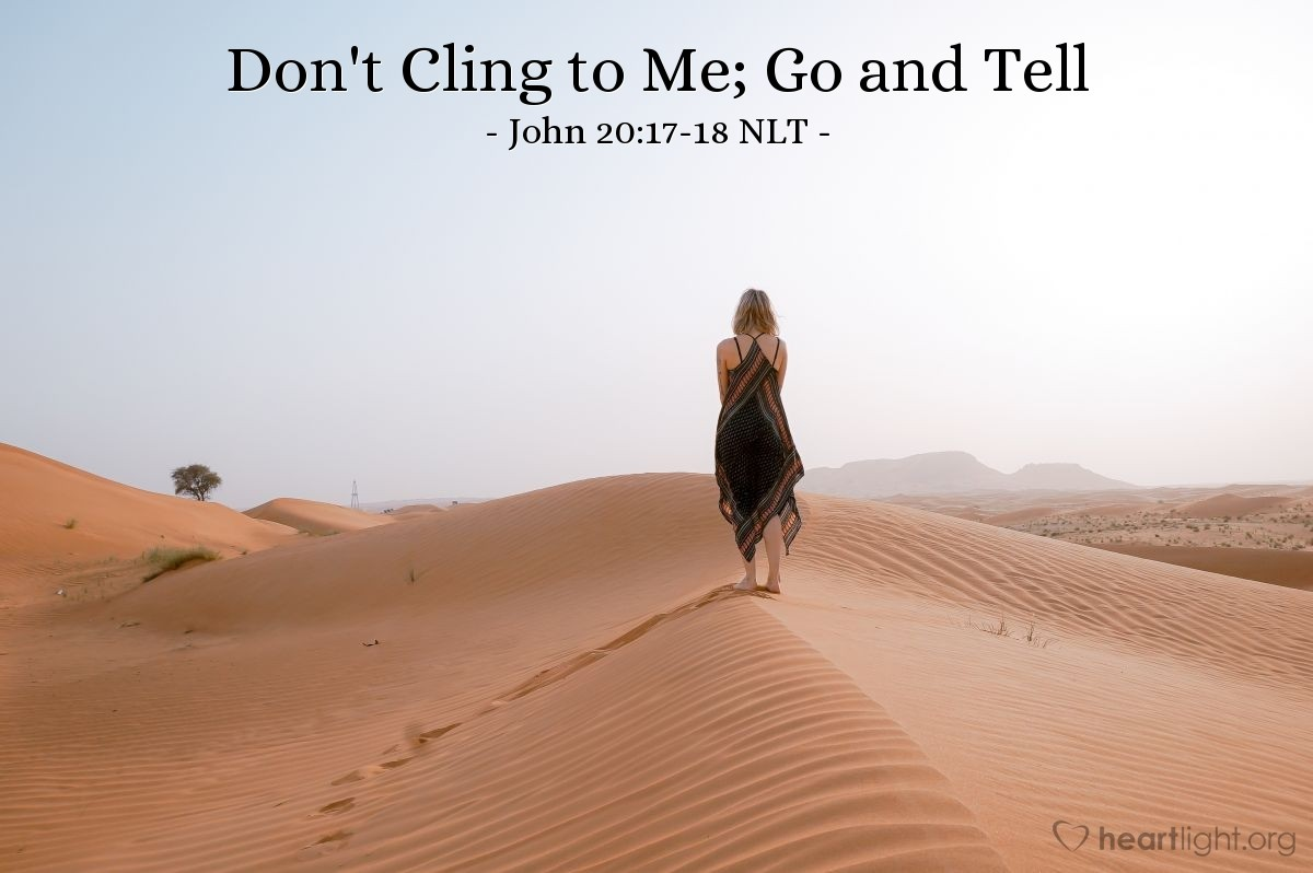 Illustration of John 20:17-18 NLT —  But go to my brothers (followers) and tell them this: 'I am going back to my Father and your Father.