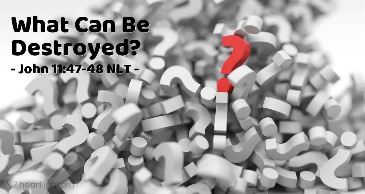 "Illustration of John 11:47-48 — ""What should we do?"