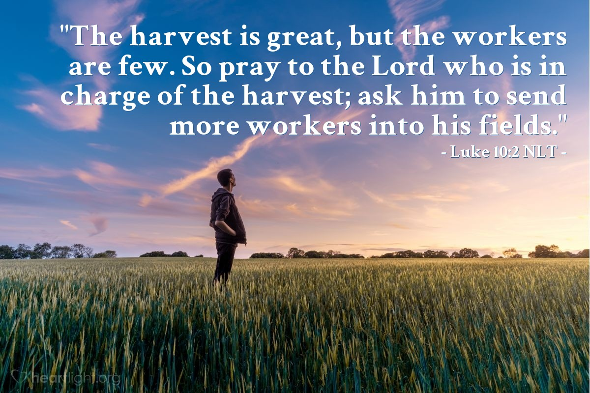 "Illustration of Luke 10:2 NLT — ""The harvest is great, but the workers are few. So pray to the Lord who is in charge of the harvest; ask him to send more workers into his fields."""