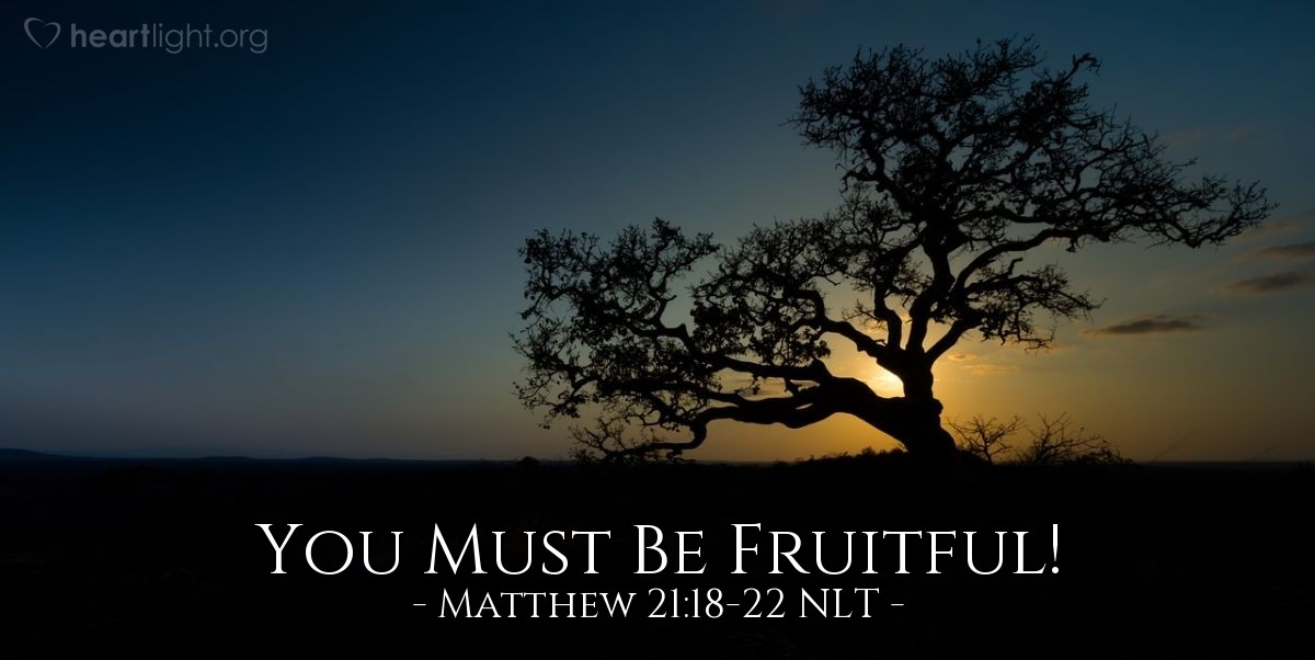 "Illustration of Matthew 21:18-22 NLT — ""You will never again have fruit!"""