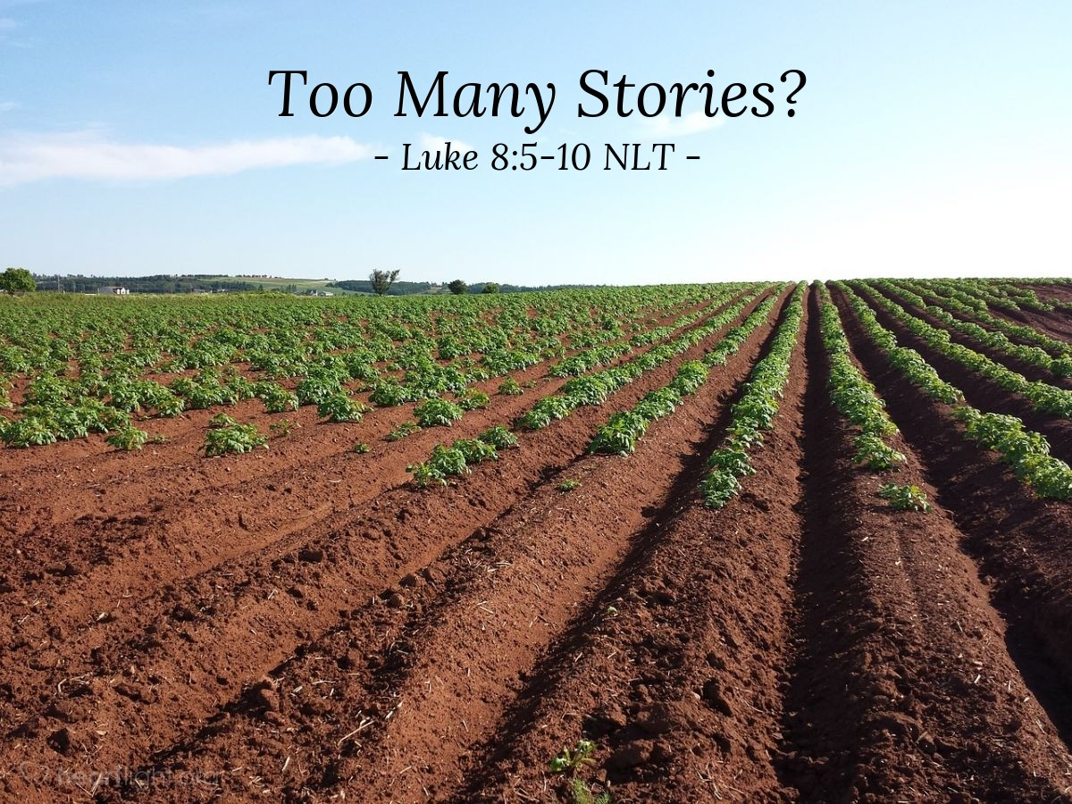 "Illustration of Luke 8:5-10 NLT — ""A farmer went out to plant his seed."""