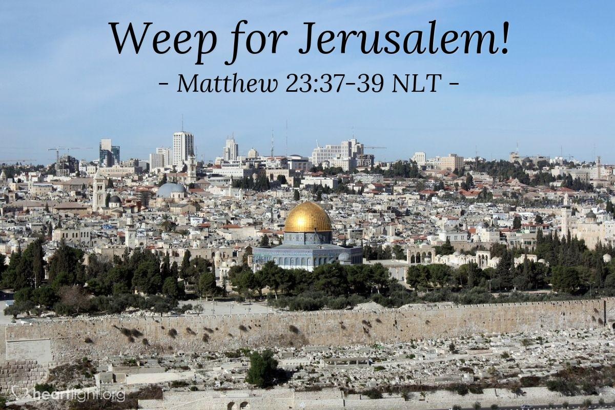 """Illustration of Matthew 23:37-39 NLT — """"O Jerusalem, Jerusalem!"""