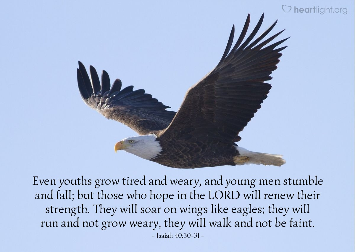 Illustration of Isaiah 40:30-31 — Even youths grow tired and weary, and young men stumble and fall; but those who hope in the LORD will renew their strength. They will soar on wings like eagles; they will run and not grow weary, they will walk and not be faint.