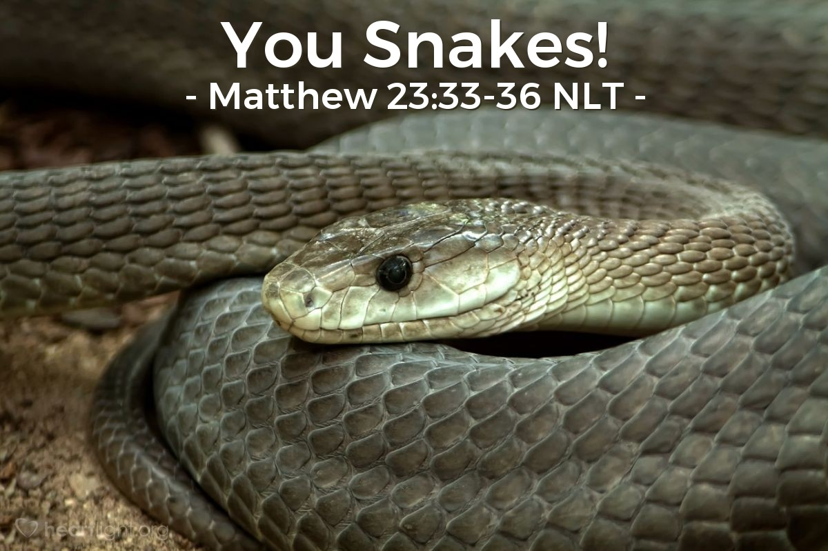 Illustration of Matthew 23:33-36 —  You are from a family of poisonous snakes!