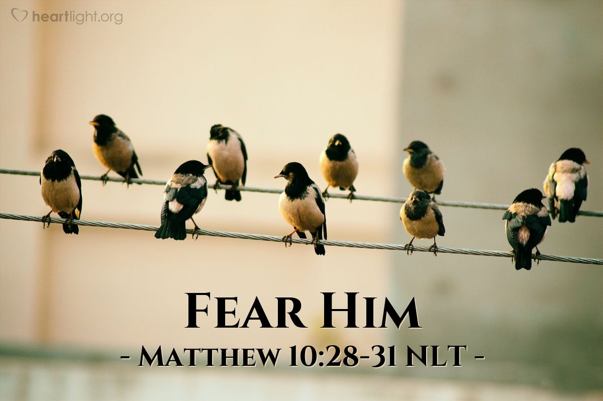 Illustration of Matthew 10:28-31 —  The only one you should fear is the One (God) that can destroy the body and the soul.