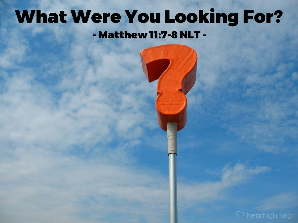 Illustration of Matthew 11:7-8 NLT —  Really, what did you go out to see?