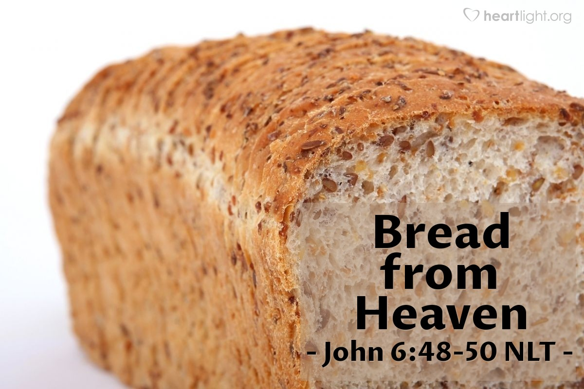"Illustration of John 6:48-50 NLT — [Jesus said,] ""Yes, I am the bread of life! Your ancestors ate manna in the wilderness, but they all died. Anyone who eats the bread from heaven, however, will never die."""