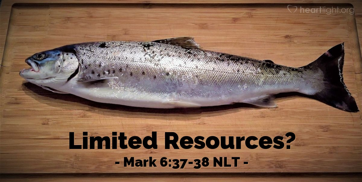 "Illustration of Mark 6:37-38 NLT — ""We have five loaves of bread and two fish."""